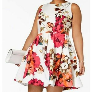 Taylor Fit & Flare Floral Dress with Pockets!